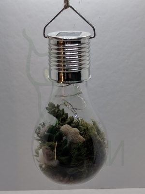 Solar Led lamp full of nature