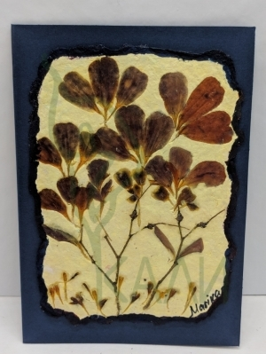Handmade gift card - Herbarium  with handmade recycled paper